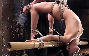 Hogtied babe exposed ass whipped